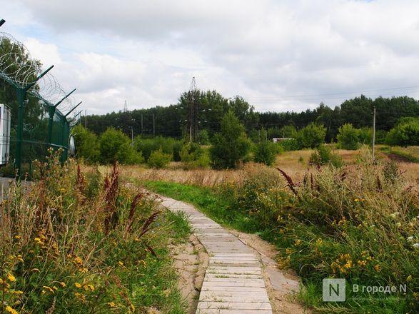 Долгая дорога из Долгово: птицефабрика «выставила» местных жителей на трассу - фото 12
