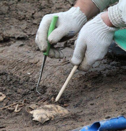 Новые находки на старом кладбище: что обнаружили археологи в Нижегородском кремле - фото 23