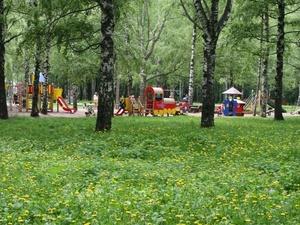 Нижегородцев приглашают к обсуждению концепции парка Пушкина
