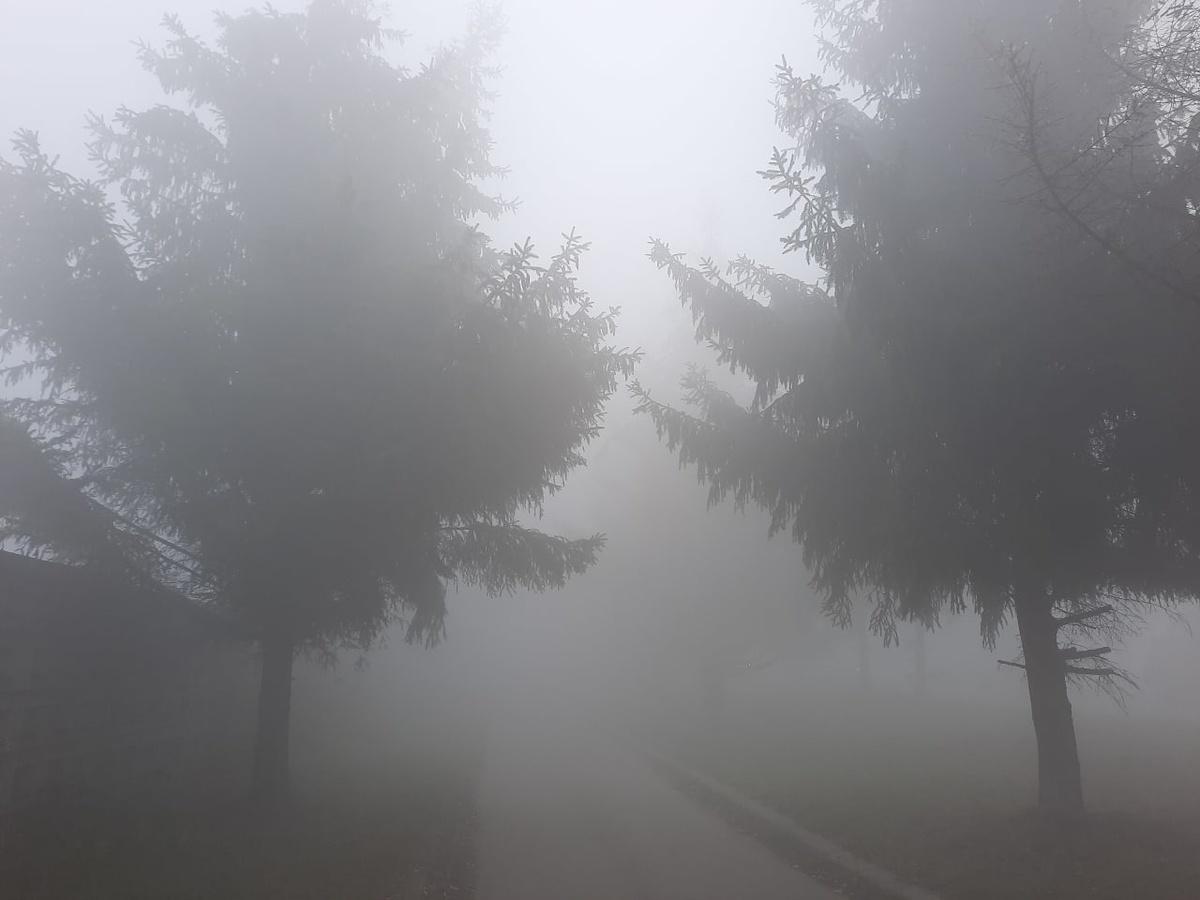 Жителям Богородска временно рекомендовано воздержаться от выхода на улицу - фото 1