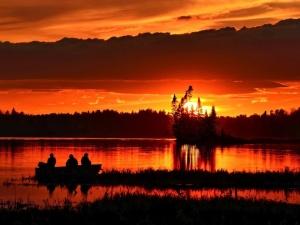 Браконьеры наловили краснокнижной рыбы на 155 тысяч рублей в Павловском районе