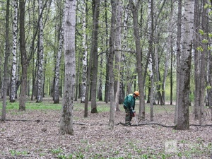 85% парка «Швейцария» благоустроят к 800-летию Нижнего Новгорода