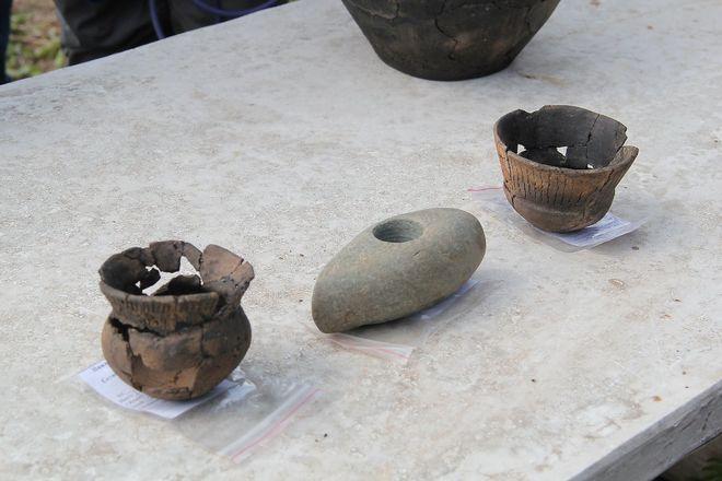 Захоронение Бронзового века обнаружили в Кузнечихе - фото 4