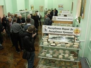 В ННГАСУ открылись Палеонтологический и Минералогический музеи