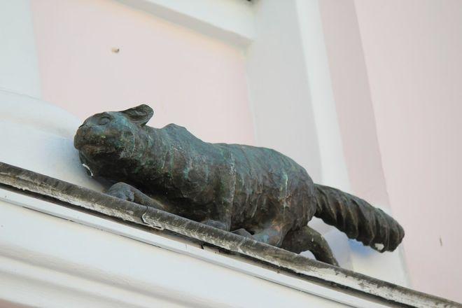 Кошка с книгой и лебединая верность: каких животных и за что увековечили в Нижнем Новгороде - фото 15