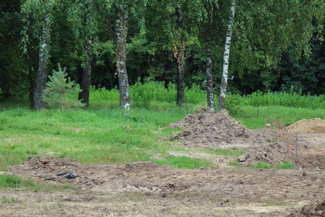 Уникальный городок и ценные деревья: как преобразится парк Пушкина - фото 8