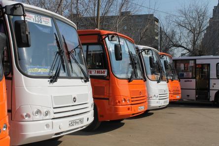 12 маршрутов с истекшими сроками договоров будут работать в Нижнем Новгороде до 4 сентября