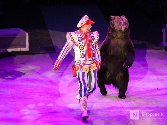Чудеса «Трансформации» и медвежья кадриль: премьера циркового шоу Гии Эрадзе «БУРЛЕСК» состоялась в Нижнем Новгороде - фото 9
