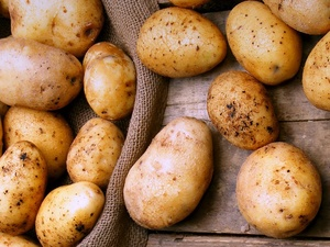 Опасность на прилавках: что эксперты нашли в картошке из российских магазинов