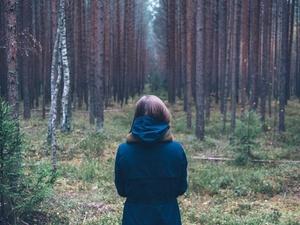 Что делать, если вы заблудились в лесу